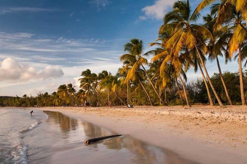 martinique-beach-of-saint-anne